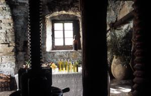 Agriturismo Borgo Muratori, Farmy  Diano Marina - big - 4