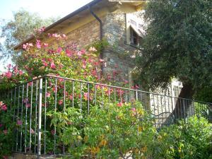 Agriturismo Borgo Muratori, Bauernhöfe  Diano Marina - big - 9