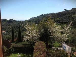 Agriturismo Borgo Muratori, Bauernhöfe  Diano Marina - big - 46