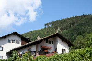 Ferienwohnungen Schwarzwald Panorama