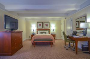 Executive Junior Queen Suite