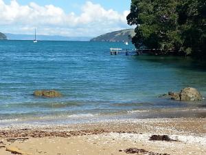 Oamaru Bay Tourist Park, Villaggi turistici  Coromandel Town - big - 7