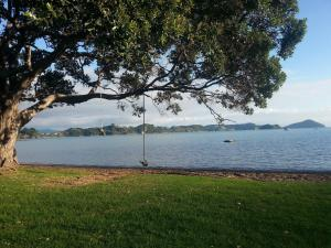 Oamaru Bay Tourist Park, Villaggi turistici  Coromandel Town - big - 8