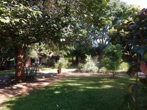 Green Tree Lodge, Chaty v prírode  Livingstone - big - 2