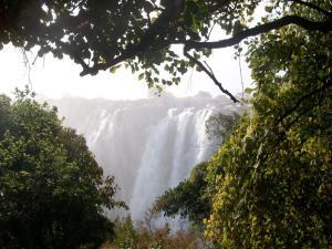 Green Tree Lodge, Chaty v prírode  Livingstone - big - 15