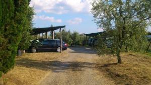 Agriturismo Bellavista, Aparthotels  Incisa in Valdarno - big - 65