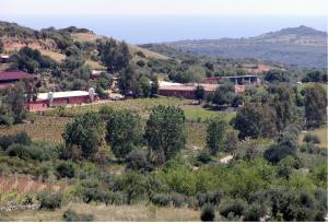 Agriturismo Su Barraccu, Farm stays  Loceri - big - 20