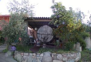 Agriturismo Su Barraccu, Farm stays  Loceri - big - 19