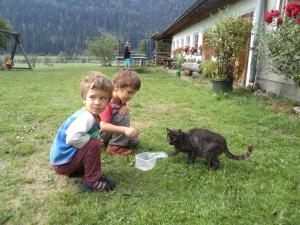 Matlhof, Agriturismi  Patergassen - big - 16