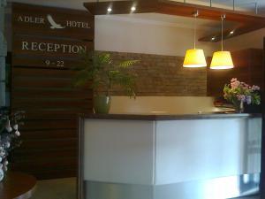 Adler Hotel & Wellness, Hotel  Tihany - big - 39