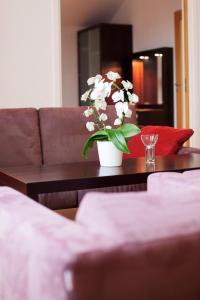 Hotel Skansen, Hotely  Färjestaden - big - 10