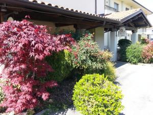 Borgonuovo, Hotel  Marene - big - 24
