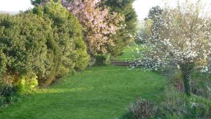 White Horse Guesthouse, Inns  Brixham - big - 22