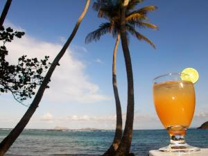 Sugar Reef Bequia - Adults Only
