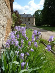 Chambres d'Hôtes Clos de Mondetour, Bed & Breakfasts  Fontaine-sous-Jouy - big - 21