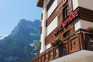 Hotel Spinne Grindelwald, Szállodák  Grindelwald - big - 73