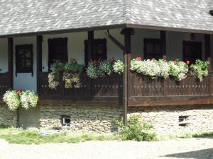 Hilde's Residence, Penzióny  Gura Humorului - big - 24