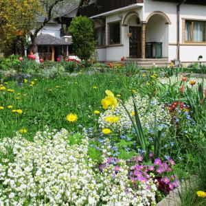 Hilde's Residence, Penzióny  Gura Humorului - big - 154