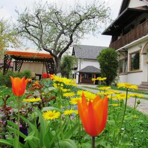 Hilde's Residence, Penzióny  Gura Humorului - big - 163