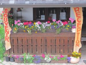 Hilde's Residence, Penzióny  Gura Humorului - big - 159
