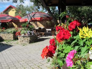 Hilde's Residence, Penzióny  Gura Humorului - big - 158