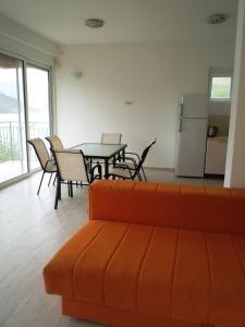 Apartments Ekatarina, Appartamenti  Teodo - big - 8