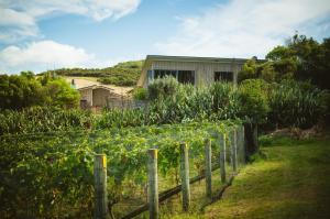 Winemakersloft, Apartmanok  Oneroa - big - 5
