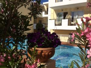 Bueno Hotel, Residence  Platanes - big - 37