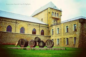 Винодельческое Хозяйство Князя П.Н. Трубецкаго, Мини-гостиницы  Новая Каховка - big - 21
