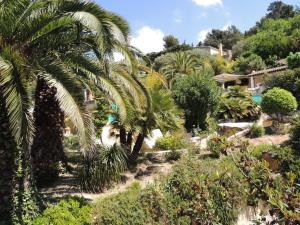 Royal Cottage, Hotely  Cassis - big - 9