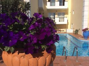 Bueno Hotel, Residence  Platanes - big - 72