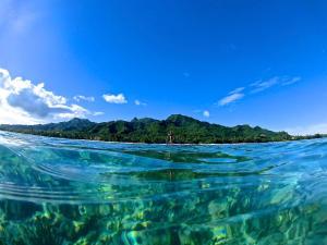 Heliconia Hideaway, Villas  Rarotonga - big - 18