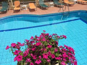 Bueno Hotel, Residence  Platanes - big - 15