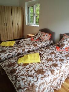 Apartments Ekatarina, Appartamenti  Teodo - big - 15