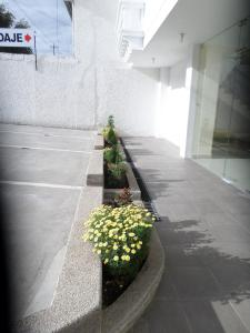 Ficoa Real Suites, Hotel  Ambato - big - 32
