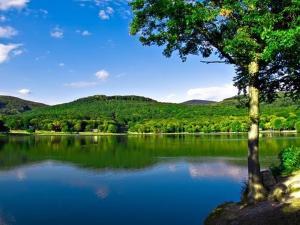 La Rosa na Vinianskom jazere, Pensionen  Vinné - big - 39