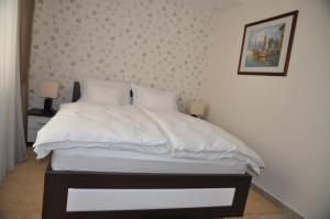 Widder Rooms, Affittacamere  Osijek - big - 4