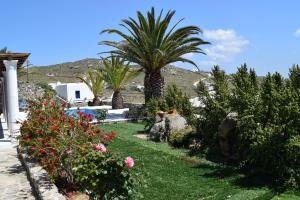 Villa Irini, Ville  Panormos Mykonos - big - 65