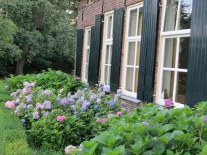 B&B Rezonans, Bed & Breakfast  Warnsveld - big - 79