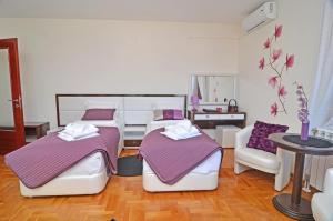 Apartments Biser, Ferienwohnungen  Vrnjačka Banja - big - 2