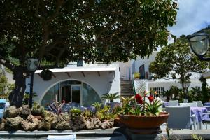 Hotel Maronti, Hotely  Ischia - big - 17