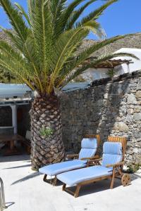 Villa Irini, Ville  Panormos Mykonos - big - 20