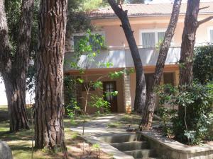 Diana & Josip Mobile Homes, Комплексы для отдыха с коттеджами/бунгало  Биоград-на-Мору - big - 60