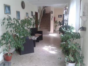 Hotelpension Schwalbennest, Guest houses  Benz - big - 36