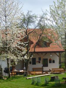 Pension Klokočí, Guest houses  Sněžné - big - 73