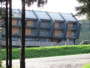 Apartments Klinovec, Apartmány  Loučná pod Klínovcem - big - 83