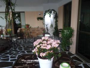 Angela Hotel, Hotely  Agia Marina Aegina - big - 71
