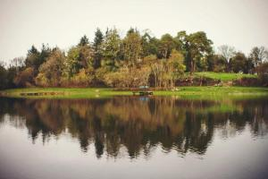 Clondanagh B&B and Farm-on-the-Lake, Panziók  Tulla - big - 23