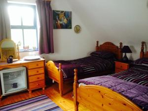 Clondanagh B&B and Farm-on-the-Lake, Bed and breakfasts  Tulla - big - 7