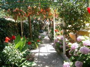 Hotel & Residence Matarese, Hotels  Ischia - big - 49